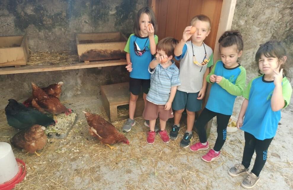Alumnes d'educació infantil de l'escola FEDAC Gironella ensenyen els ous que han post les gallines del projecte Galliner.