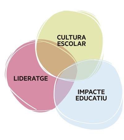 Les escoles FEDAC estem immerses en un procés de transformació, basat en tres eixos: un nou impacte educatiu, un nou lideratge i una nova cultura escolar.